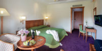Hotel THEOPHANO IMPERIAL PALACE (7)